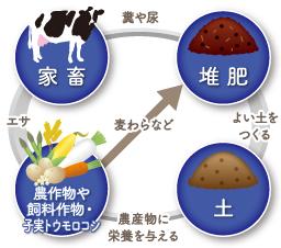 循環型農業2